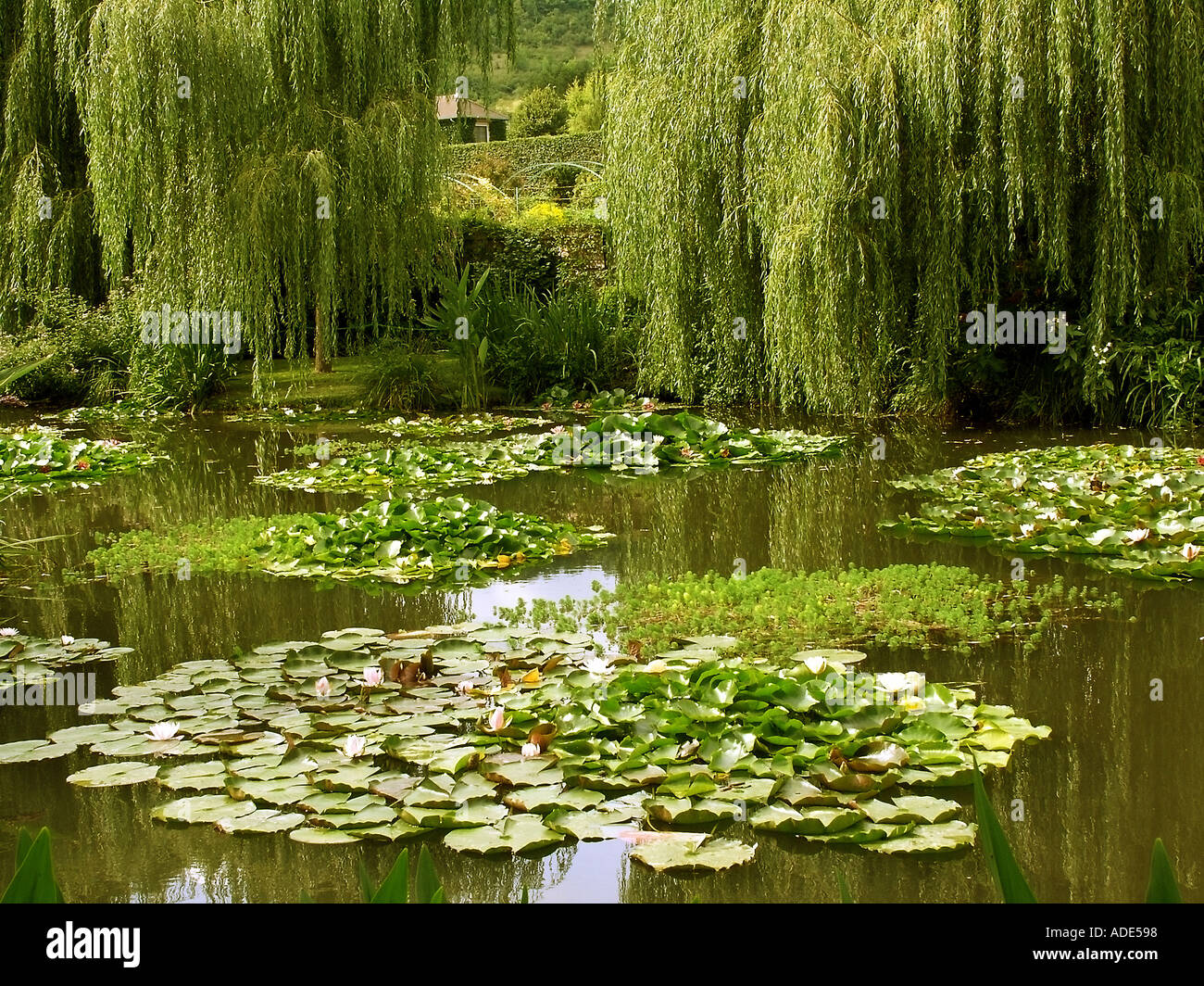 France Normandy Eure Giverny The House And Gardens Of The Painter Monet The  Water Lily Garden