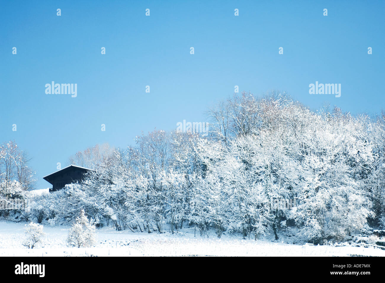 Winter landscape with chalet - Stock Image
