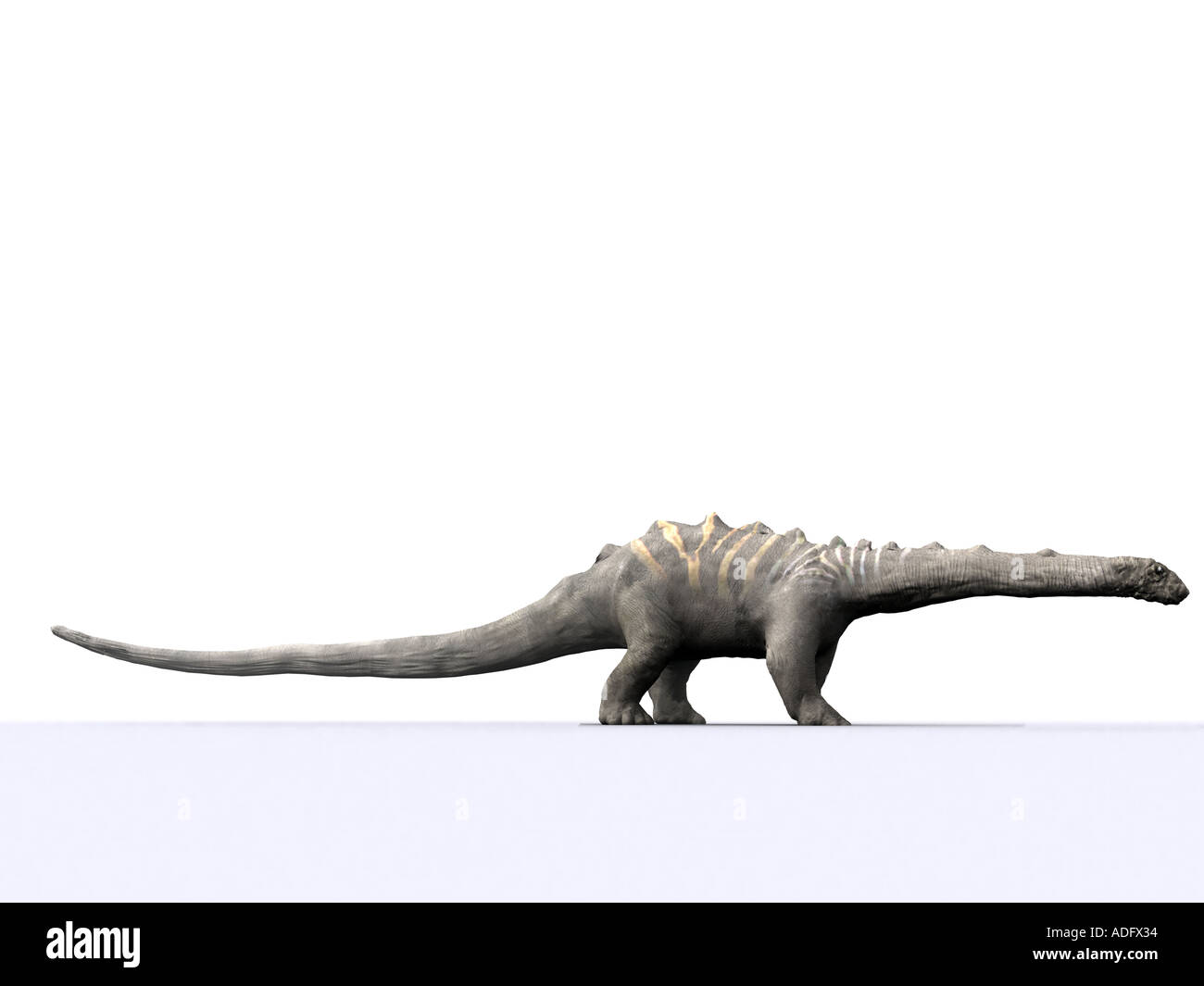 diplodocus or brontosaurus one of the sauropod family of dinosaurs 3d illustration Silhouette Stock Photo