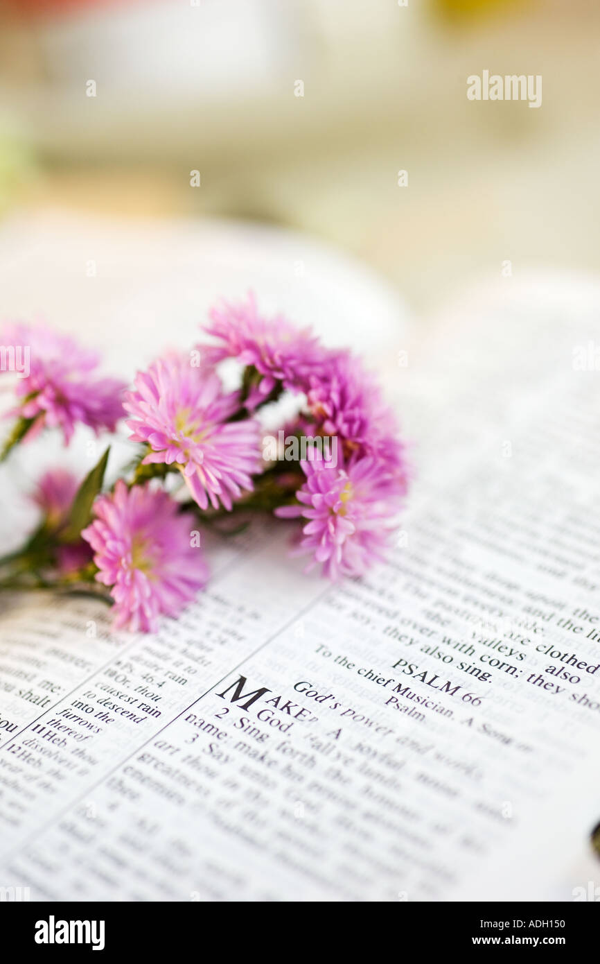 Flowers With Bible Stock Photos & Flowers With Bible Stock Images ...