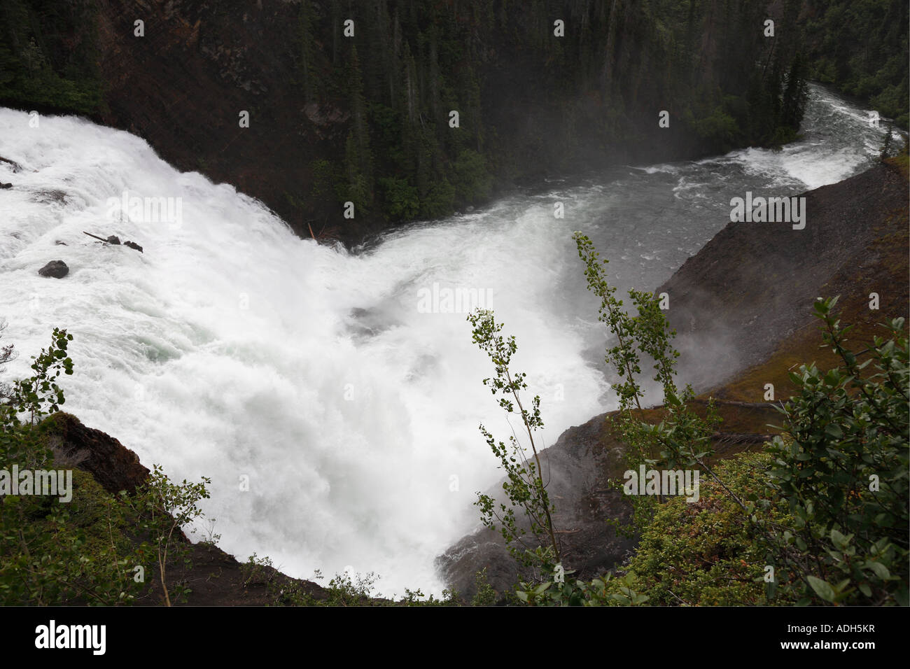 Iskut River Stock Photos & Iskut River Stock Images - Alamy