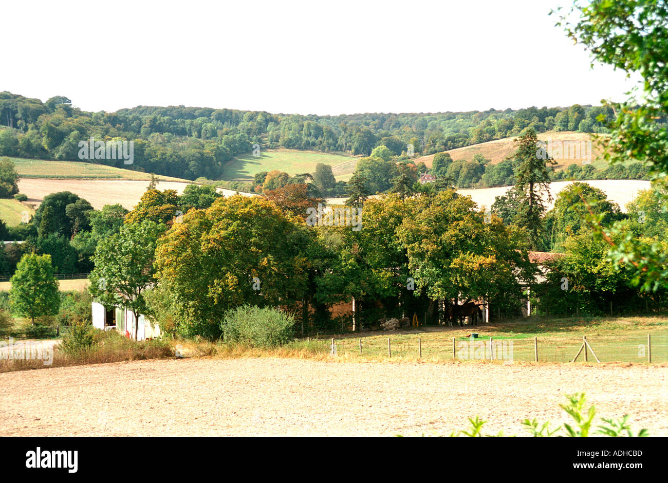 English Countryside scene of many films and TV shows - Stock Image