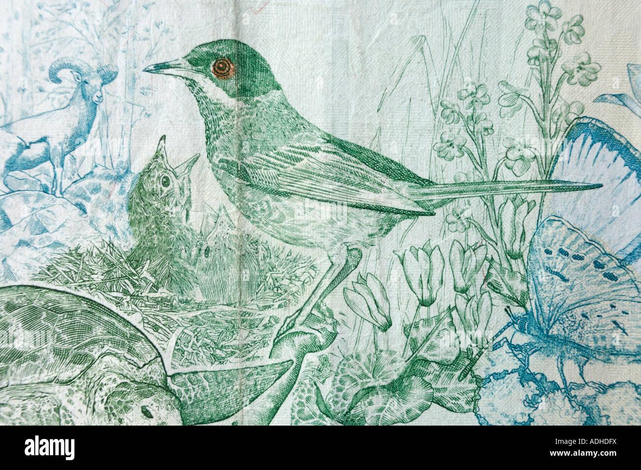 Cyprus Warbler bird pattern on Cyprus ten pounds bill Stock Photo