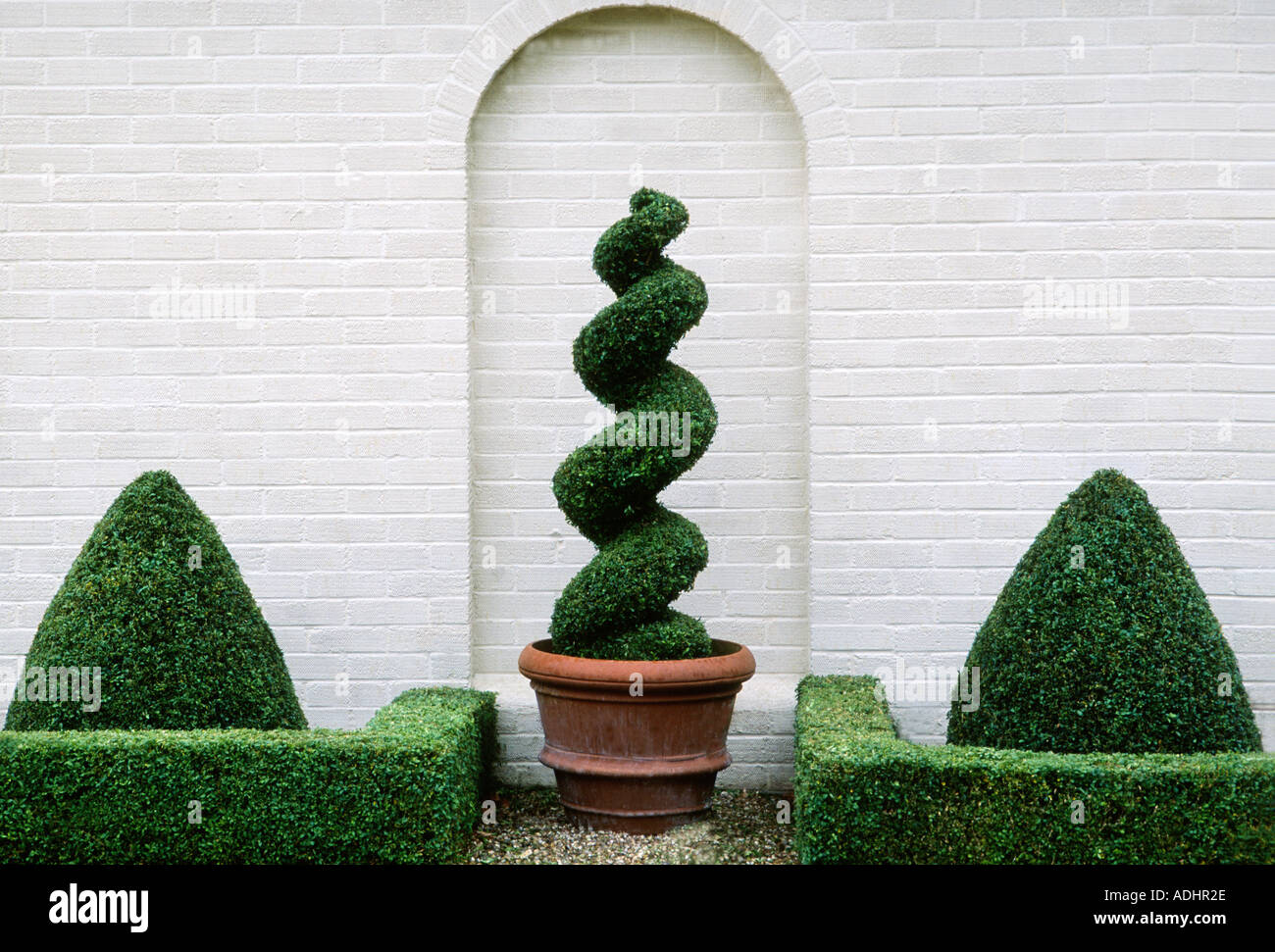 Garden Box Topiary Spiral Design Plants Geometric Wall Arch Clipped Stock Photo Alamy