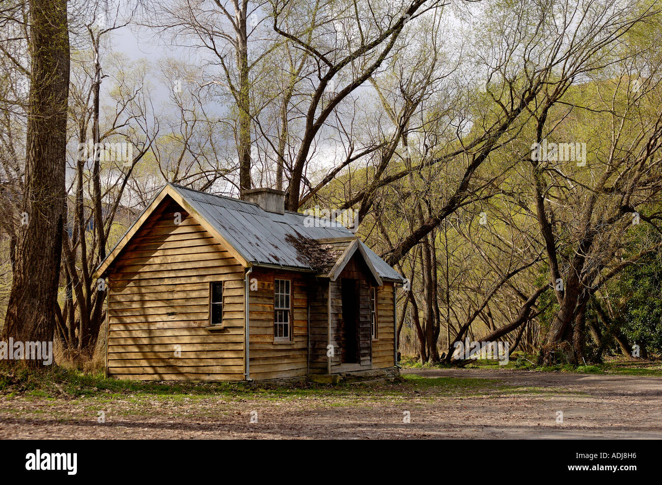 A old timber hut in amongst tall sprawling woodland. - Stock Image