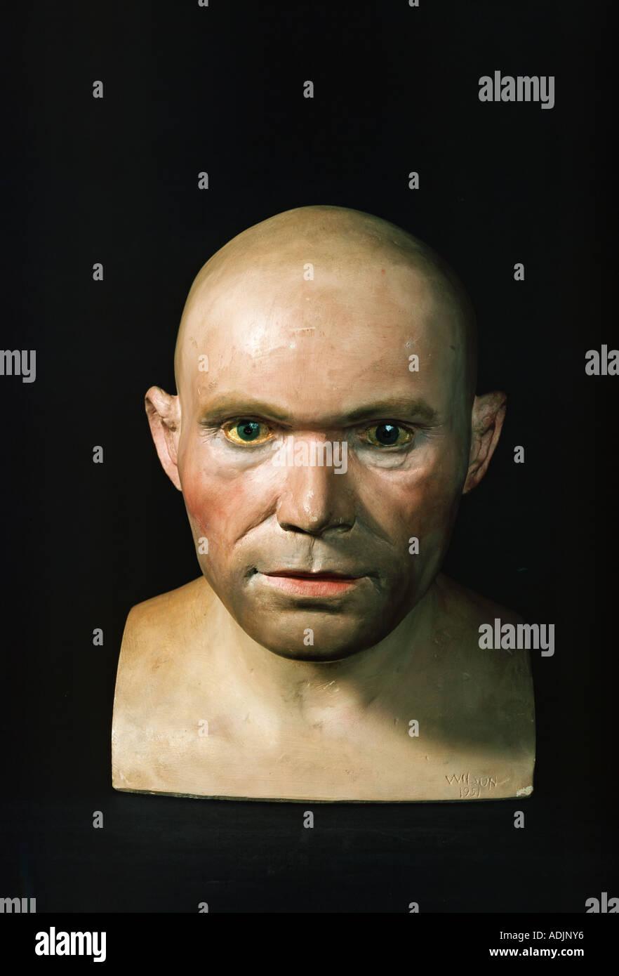 Homo sapiens, Cro-Magnon man head Stock Photo: 7677557 - Alamy