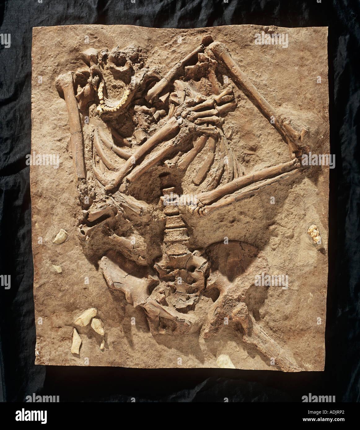 Homo neanderthalensis Kebarah burial site - Stock Image