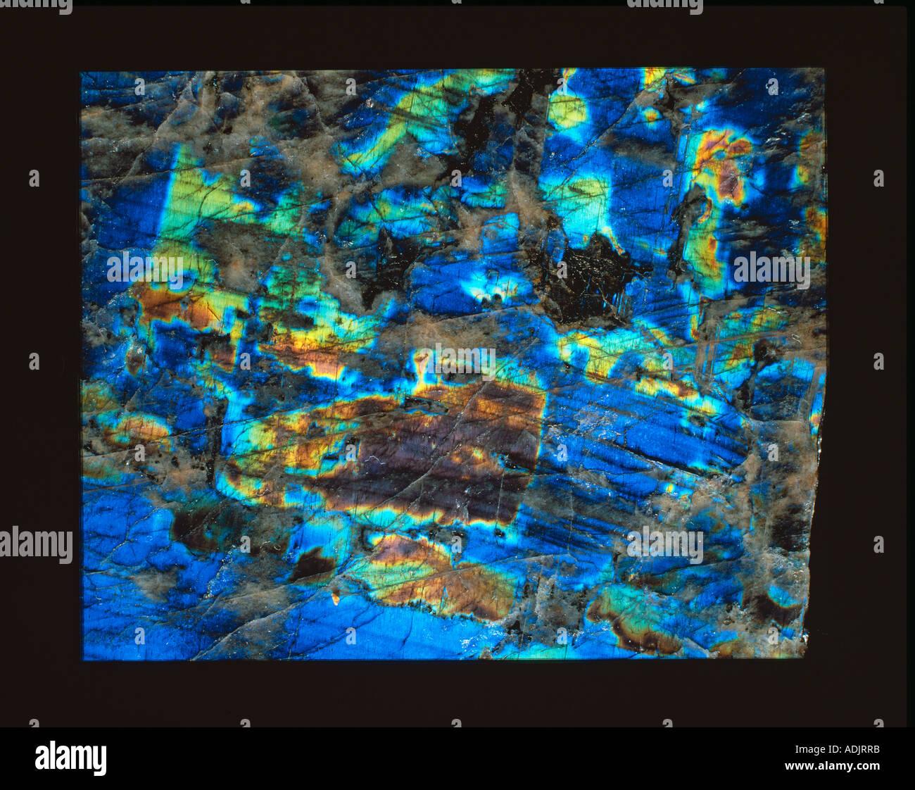 Polished slab of labradorite - Stock Image