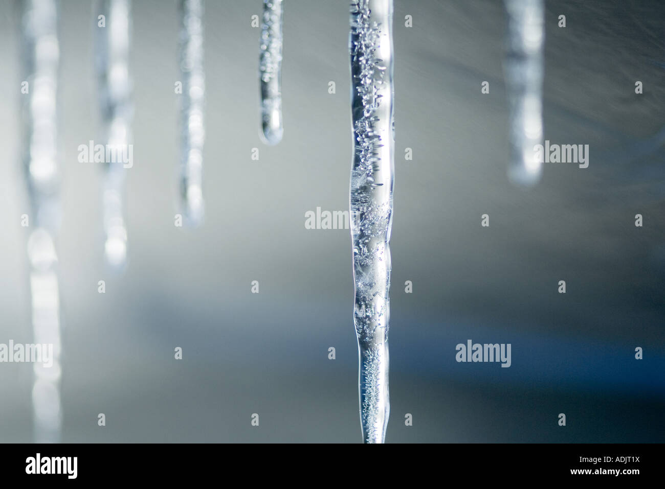 Icicles - Stock Image