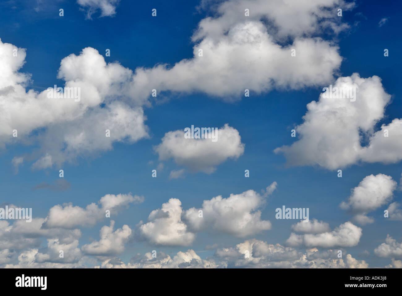 Cumulous clouds over Sokol Blossor Vineyards Oregon - Stock Image