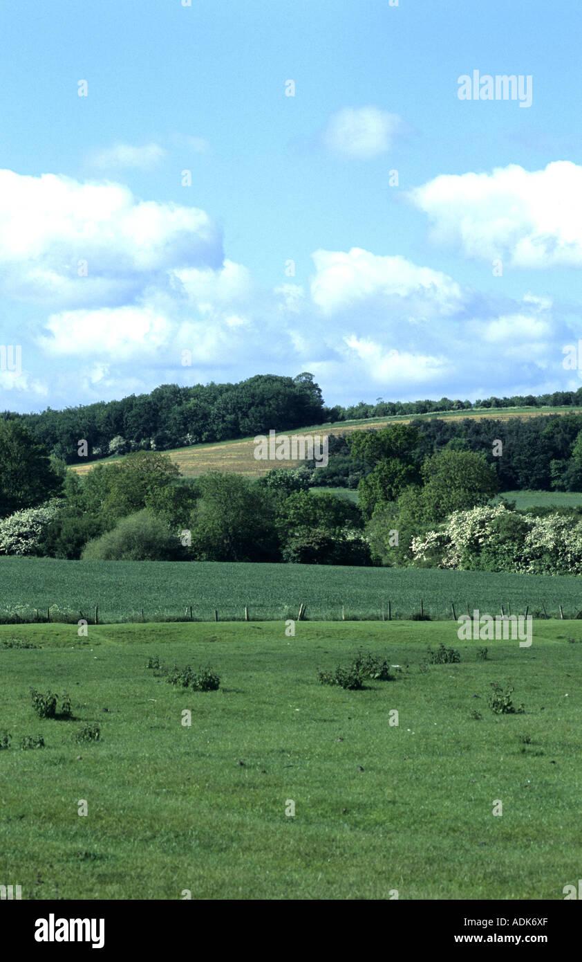 Battle of Edgcote site, Oxfordshire, England, UK - Stock Image