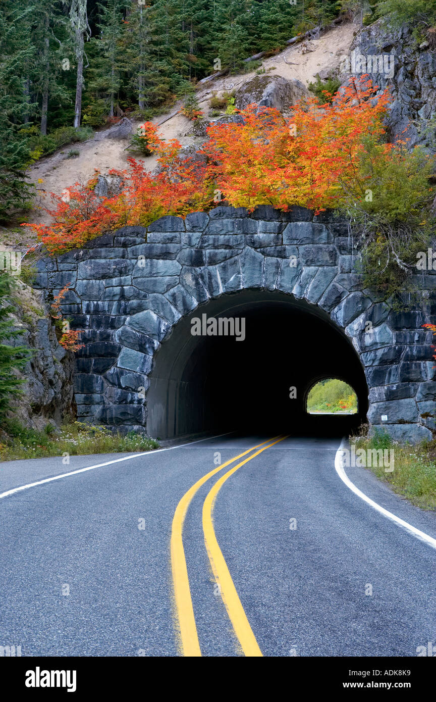 Road and tunnel through Mt Rainier National Park Washington with fall color vine maple - Stock Image