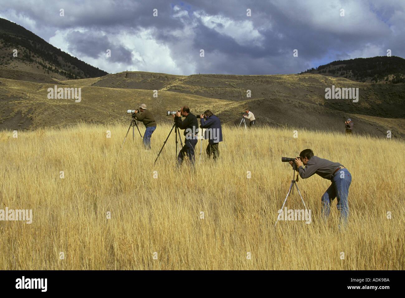 Sports Pastimes Photography Group of Wildlife Photographers - Stock Image