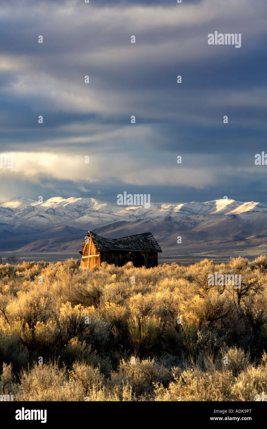 Sunrise on abandoned cabin and the Pueblo Mountaions with fresh snow Oregon - Stock Image