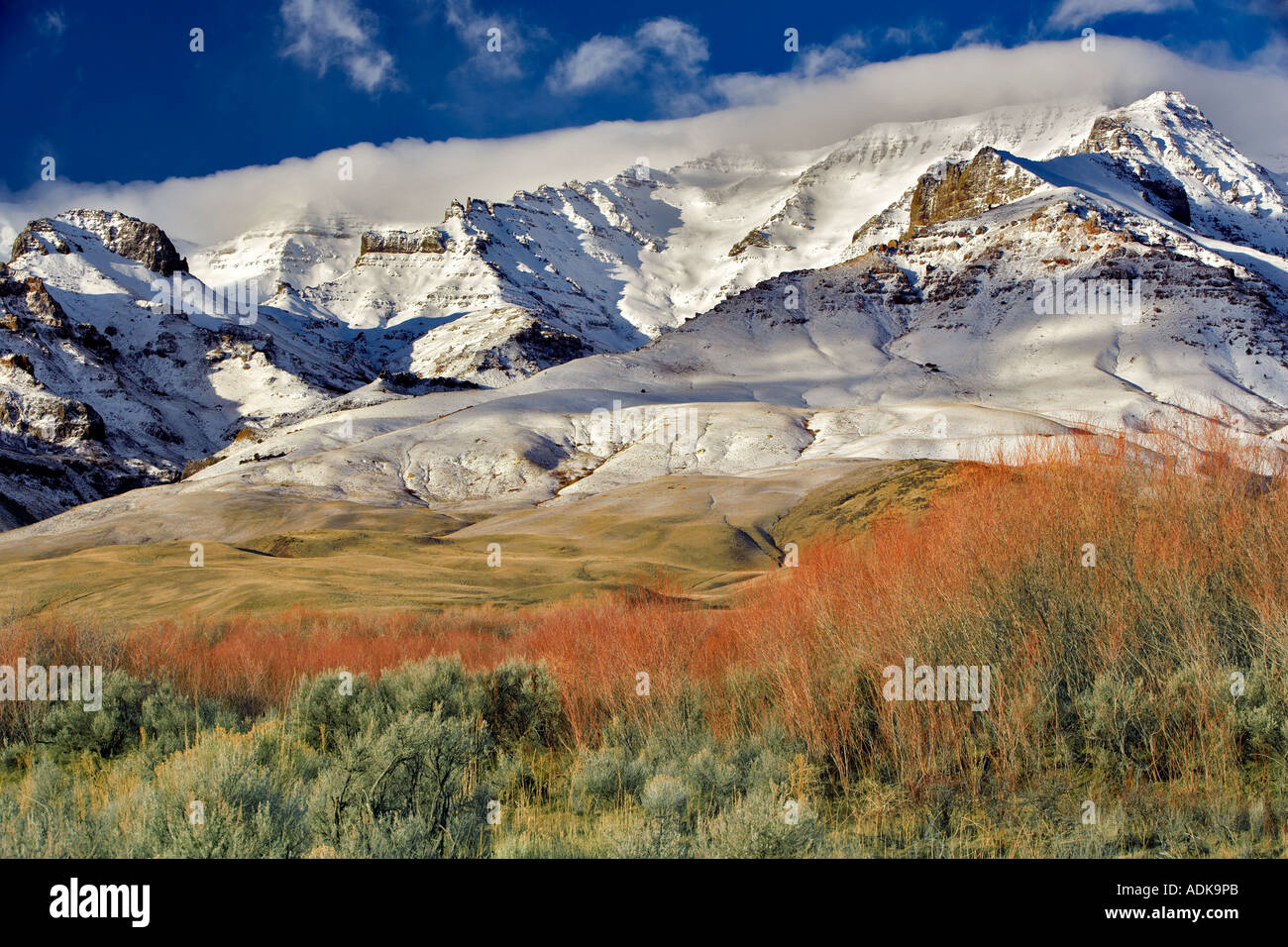 Steens Mountain with fresh snow and red willows Oregon - Stock Image