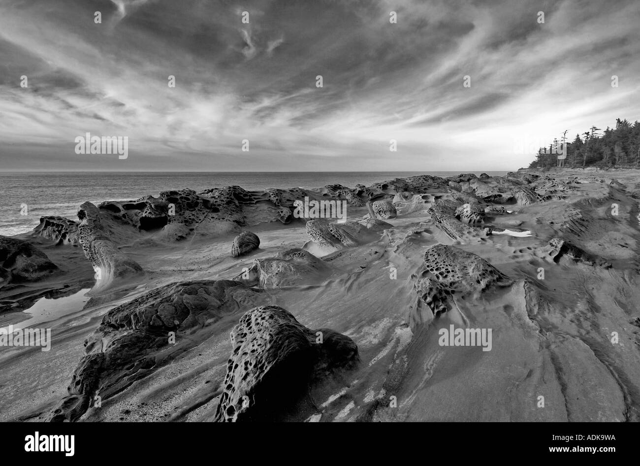 Rock formations and ocean at Shore Acres State Park Oregon - Stock Image