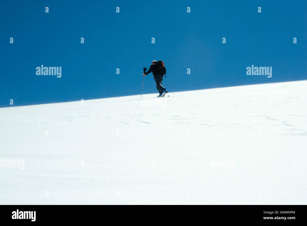 Skier - Stock Image