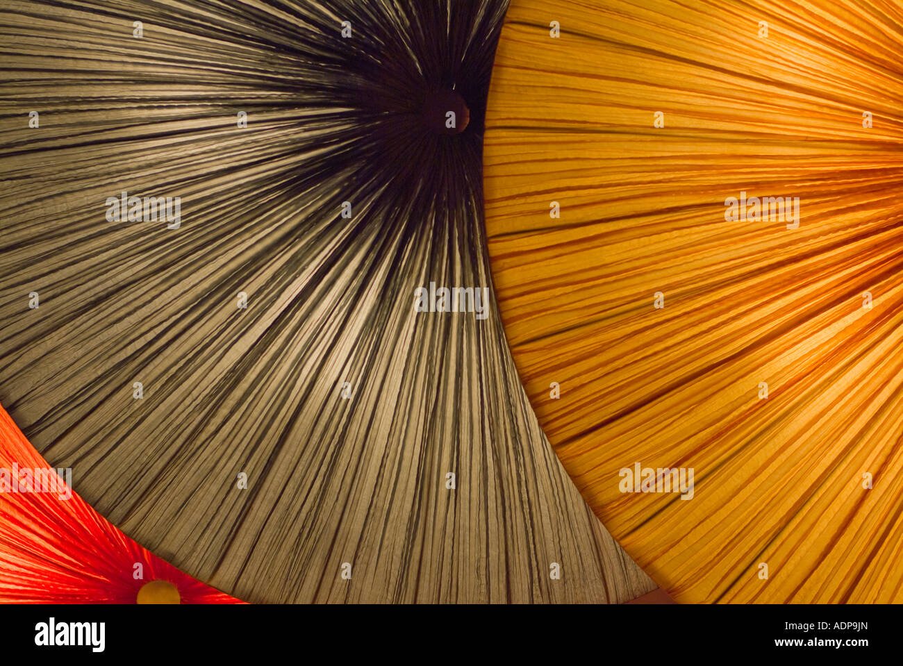 Bright colorful back lit oriental umbrellas Stock Photo: 13469228