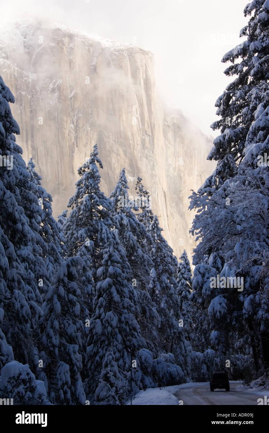 usa california yosemite national park fresh snow fall on el capitan