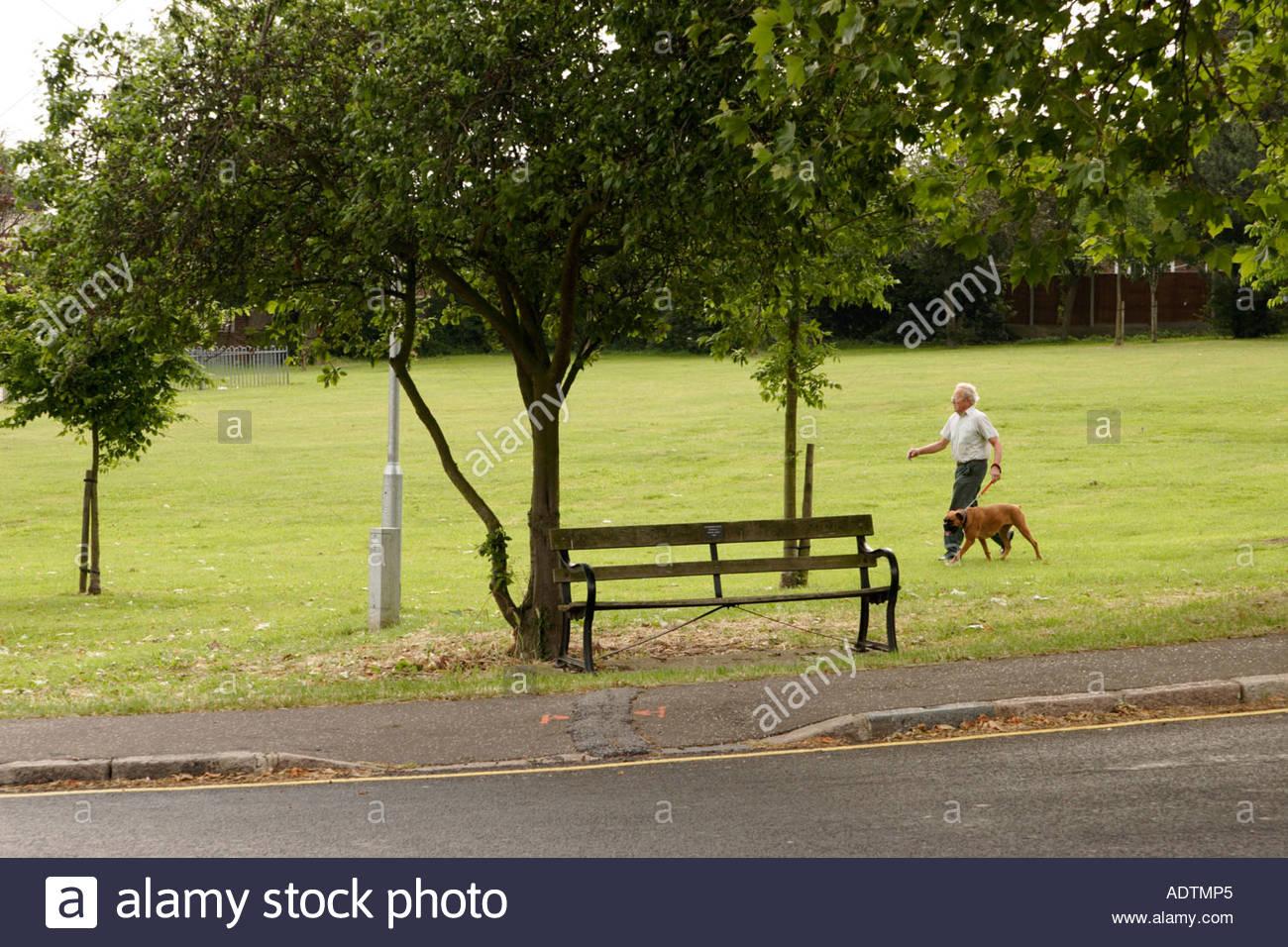 A man walking his dog, UK. - Stock Image