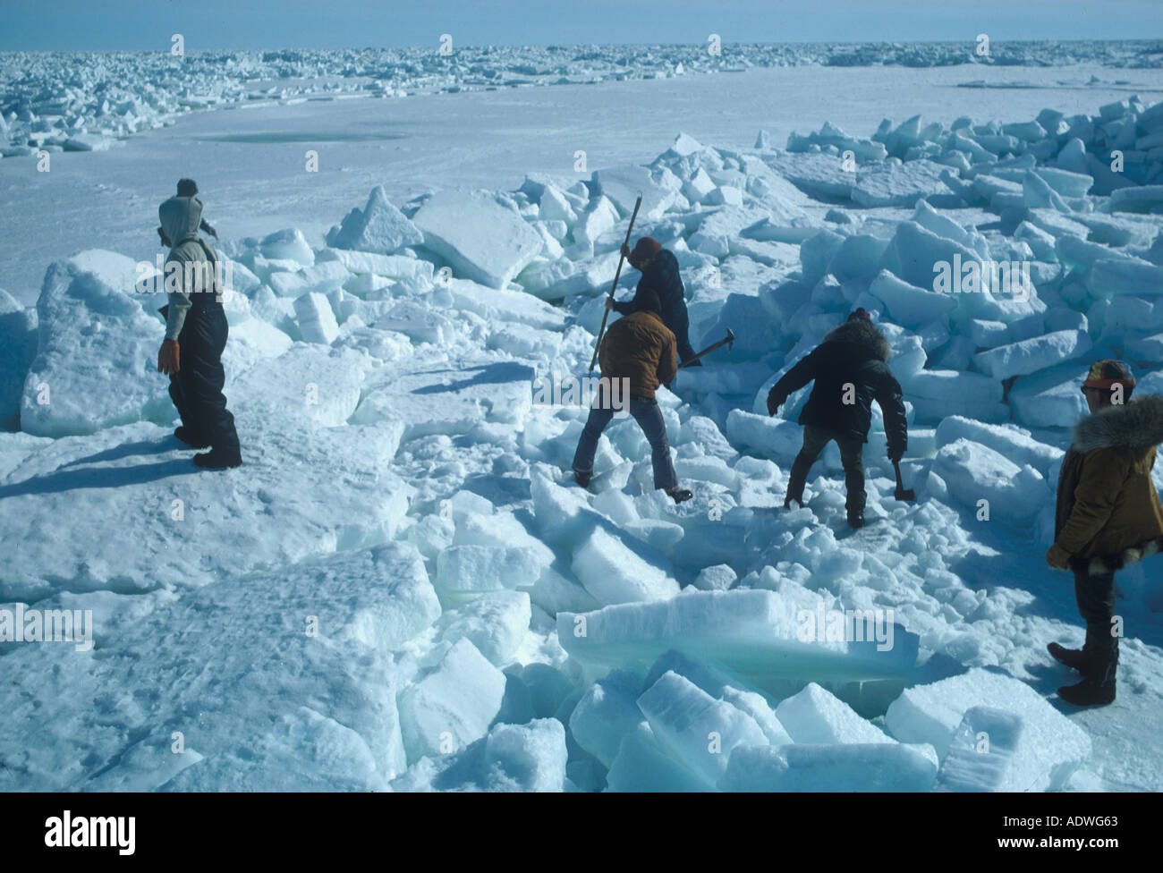 arctic people inuit eskimo people cut pathway in pressure ice to get