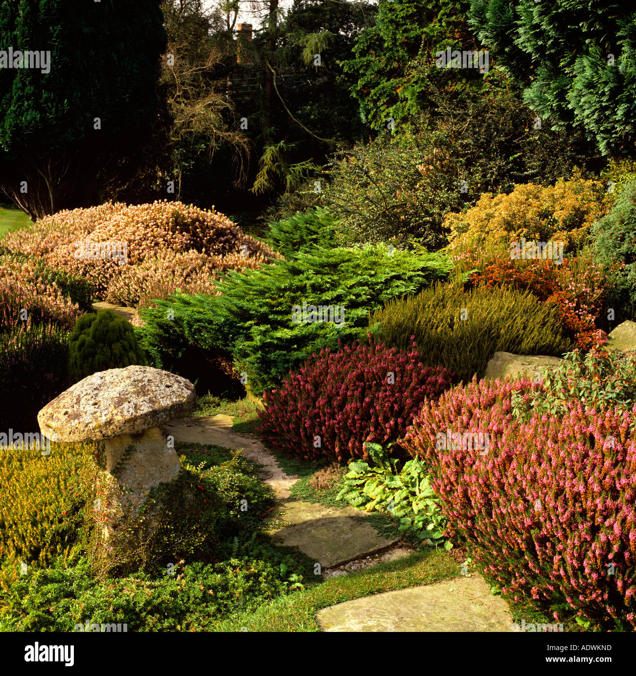 Garden Stockport England Gardening Stock Photos & Garden Stockport ...