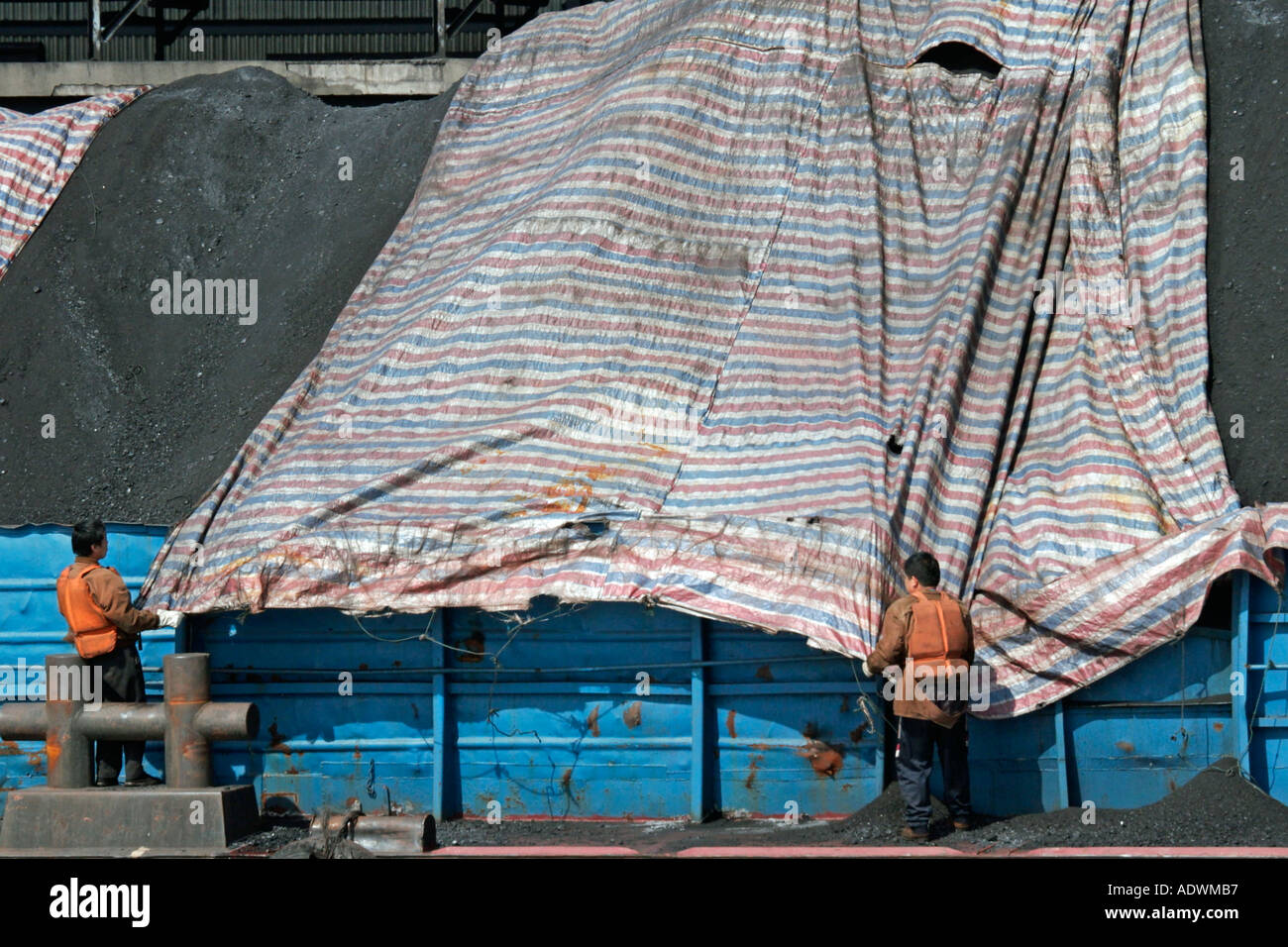 barge workers use a canvas tarp to cover coal along the huang pu