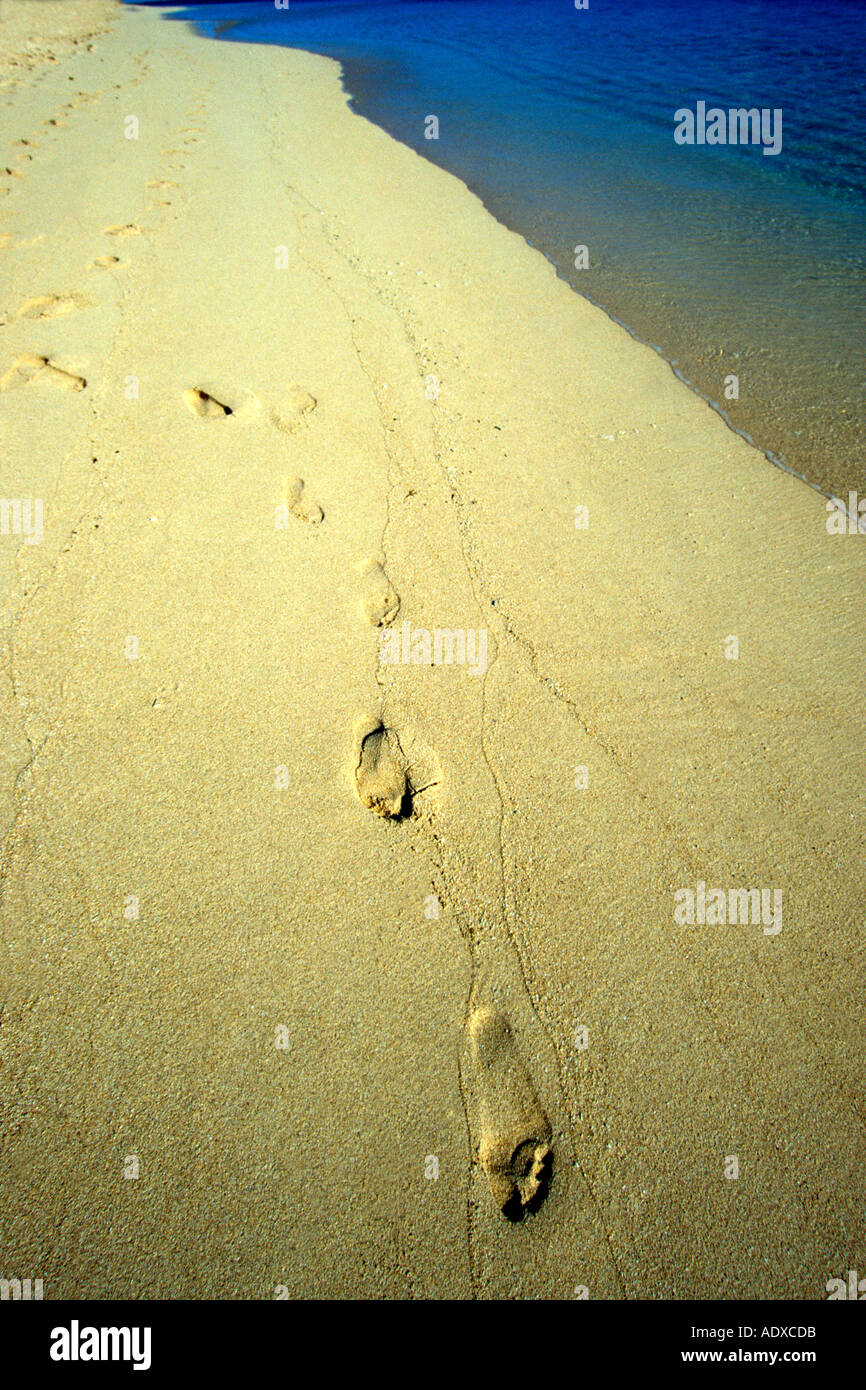 Leave Only Footprints Stock Photos & Leave Only Footprints Stock ...