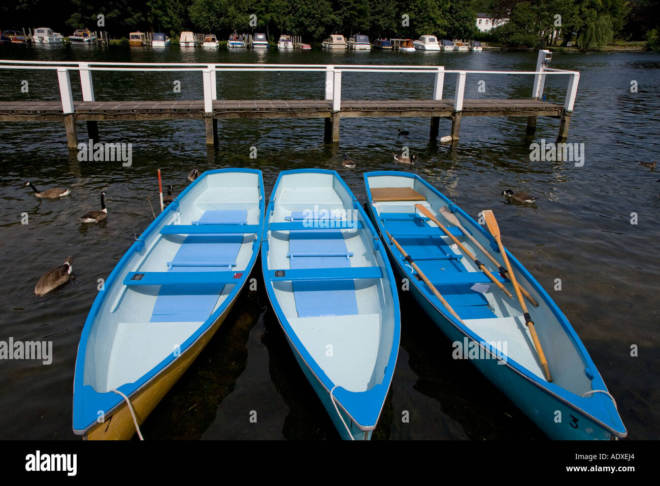 Rowing Boats on Thames Near Henley Oxfordshire - Stock Image
