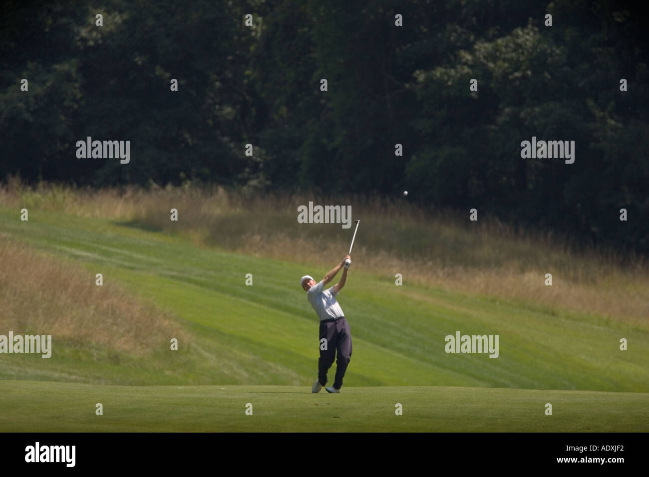 Golfer hitting a ball on a fairway - Stock Image