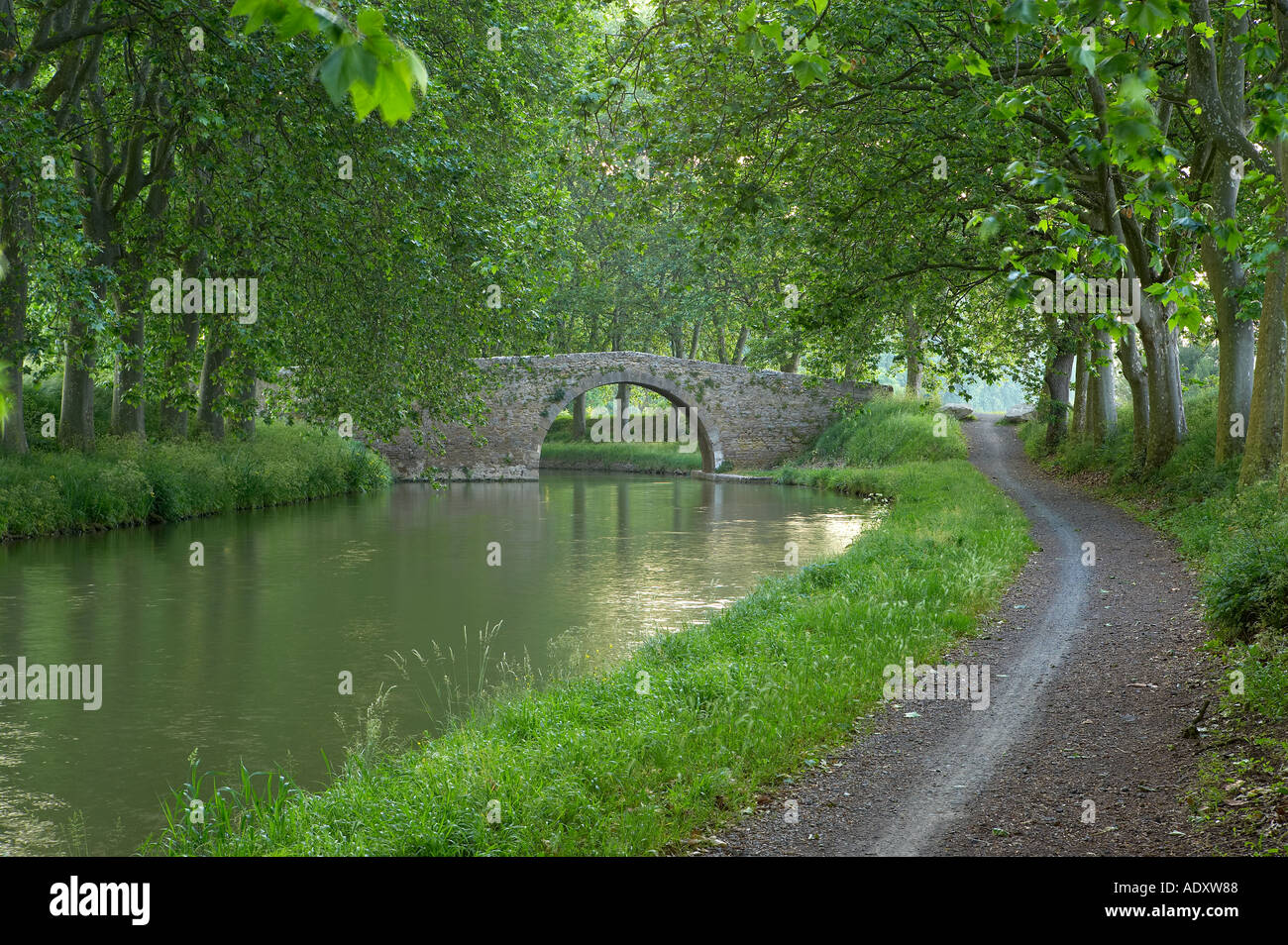 The tow path on the Canal du Midi nr Carcassonne Languedoc France - Stock Image