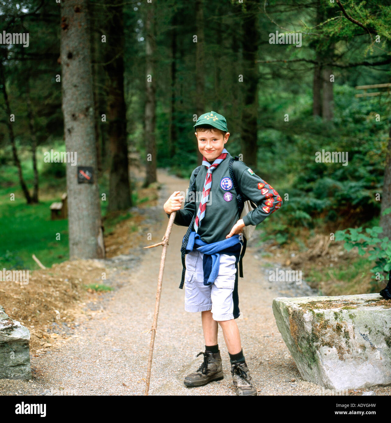 Full length portrait of one boy scout in uniform with badges on sleeve standing outdoors on a woodland trail in - Stock Image
