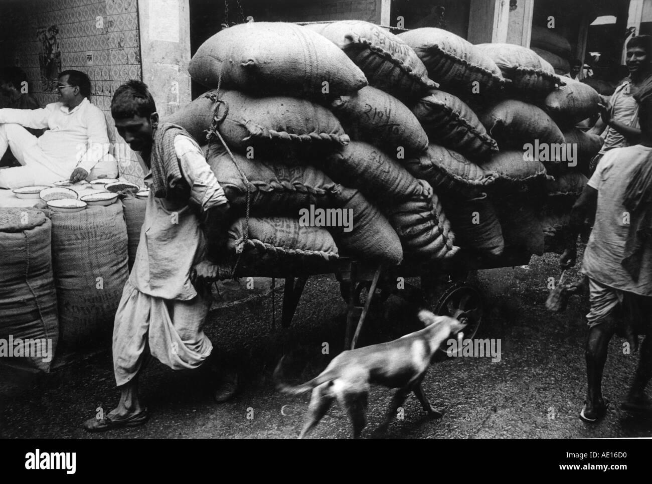 Cart puller in Sadar bazaar Delhi India - Stock Image