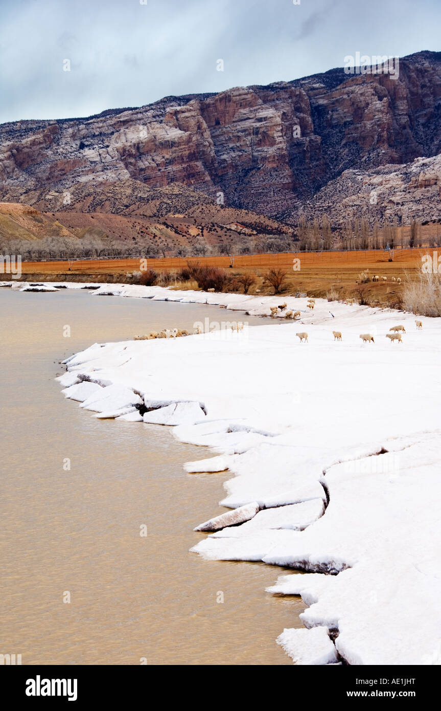 USA Utah Dinosaur National Monument, Dinosaur contains the worlds most concentrated collection of Jurassic Era dinosaur - Stock Image