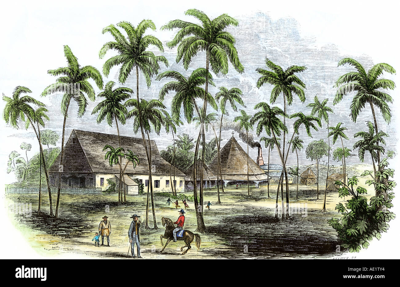 Sugar plantation in Cuba 1850s. Hand-colored woodcut - Stock Image