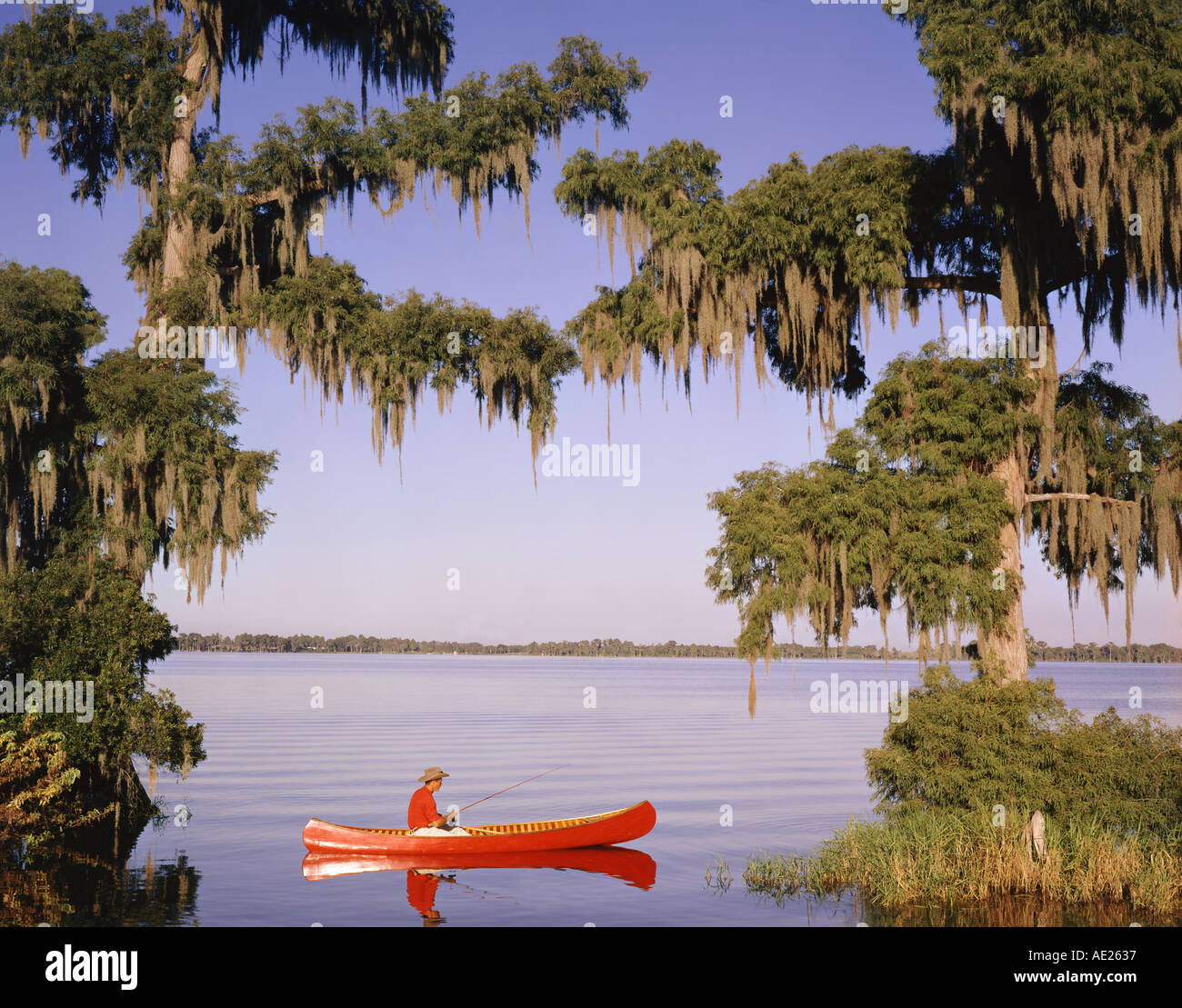 man fishing from canoe in Florida lake by Cypress trees