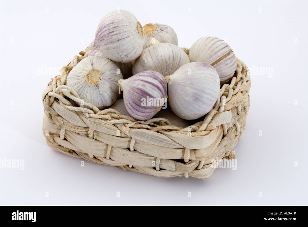 Elephant Garlic, Russian Garlic (Allium ampeloprasum), bulbs in a small basket, studio picture - Stock Image