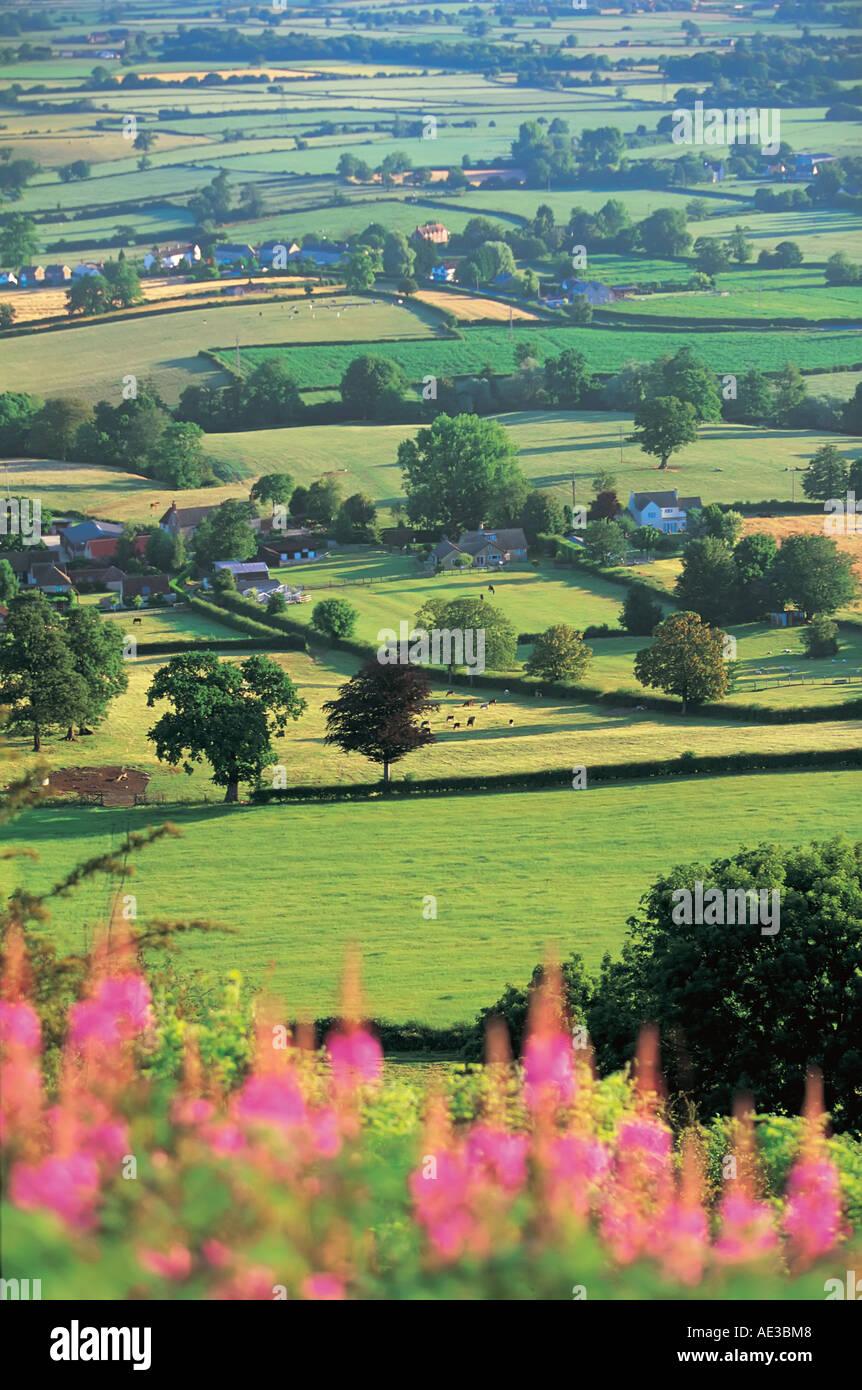 Cam Longdown Gloucestershire England Europe - Stock Image