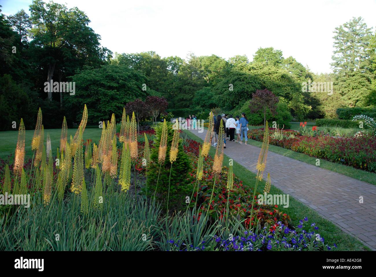 Merveilleux Longwood Gardens Near Philadelphia Flowers Philadelphia Pennsylvania PA USA    Stock Image