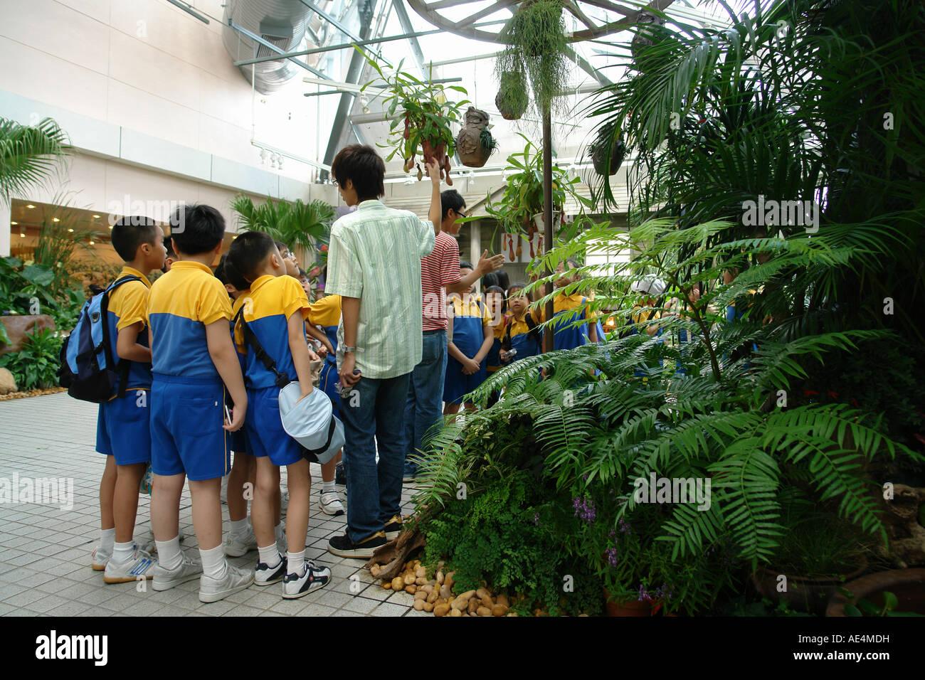 Pupils learn in Hong Kong Park Hong Kong China - Stock Image