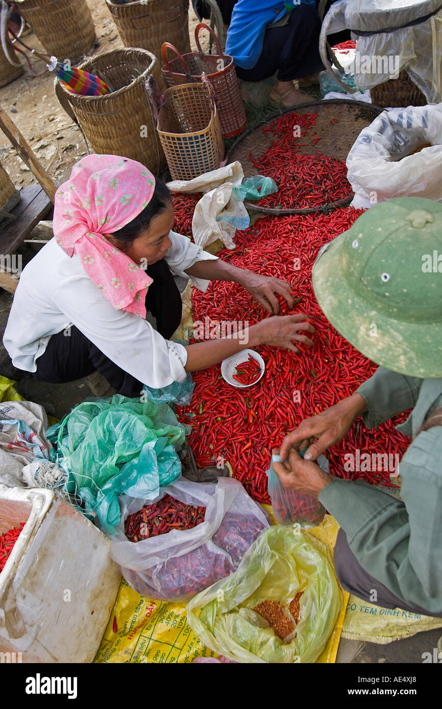 Woman selling red chillies Bac Ha hilltribe market known for colourful Flower Hmong traders north Vietnam Stock Photo