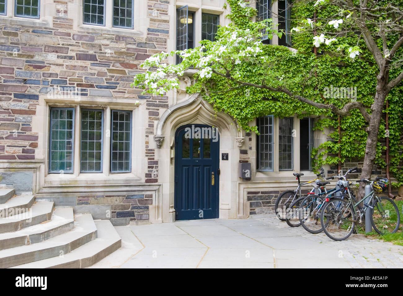 on collegiate gothic architecture in home design html