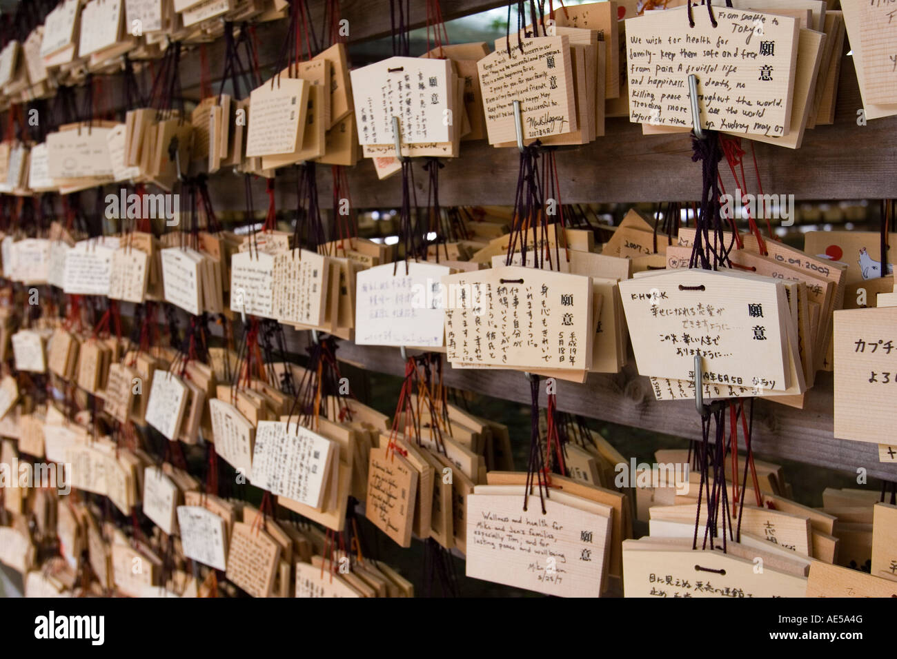 Rows of wooden votive plaques - ema - with wishes and prayers in different languages at  Meiji Jingu shrine in Tokyo - Stock Image