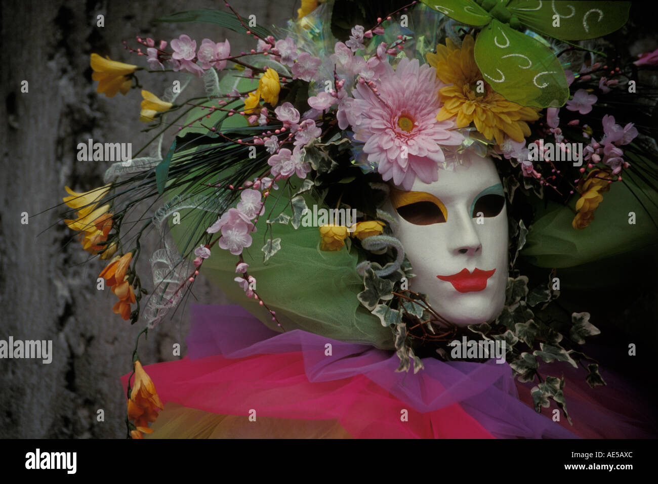 Masked woman in the Venetian costumes festival - Stock Image