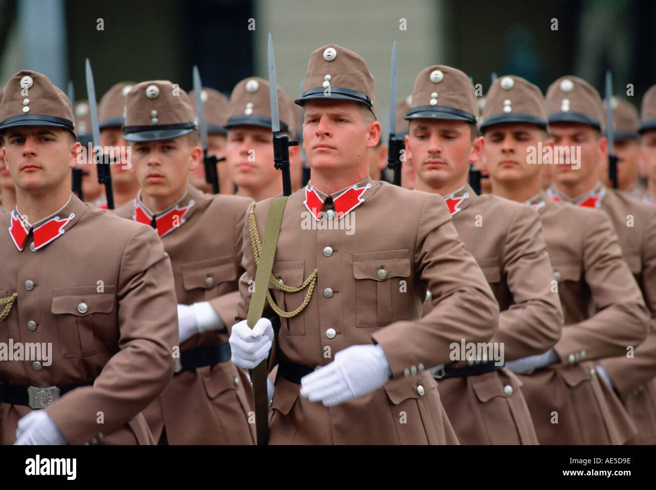 611bcf2cf Hungarian Soldiers Stock Photos & Hungarian Soldiers Stock Images ...