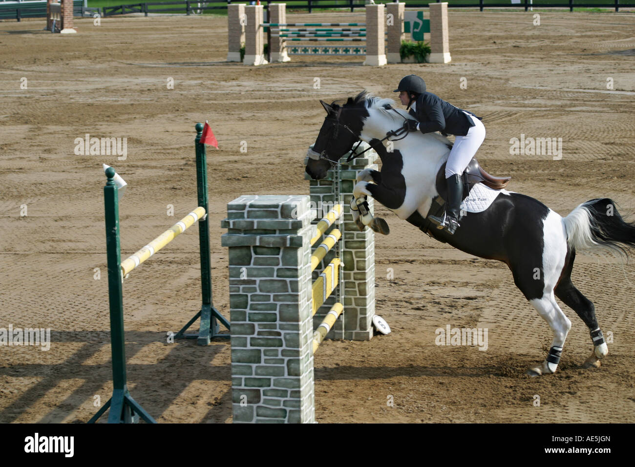 Equestrian Competition High Resolution Stock Photography And Images Alamy