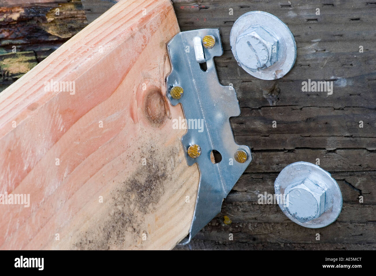 Floor joist resting in metal hanger nailed to a pressure treated rim joist next to two bolts - Stock Image