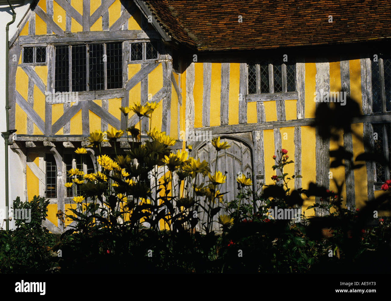 Timber Framed medieval Hall House off the Market Square in Lavenham Oak timbers have been lime washed Suffolk - Stock Image