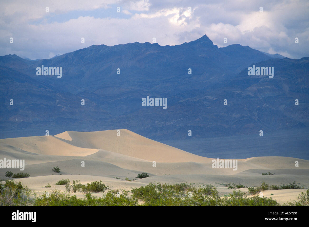 Spring Comes To Dunes >> Sand Dunes Spring Storm Clouds And Mountains Stovepipe Wells Death