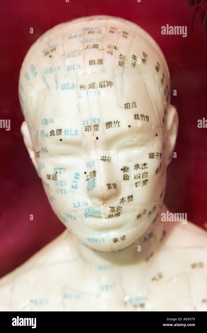 Ceramic head showing acupuncture points Stock Photo: 944505 - Alamy